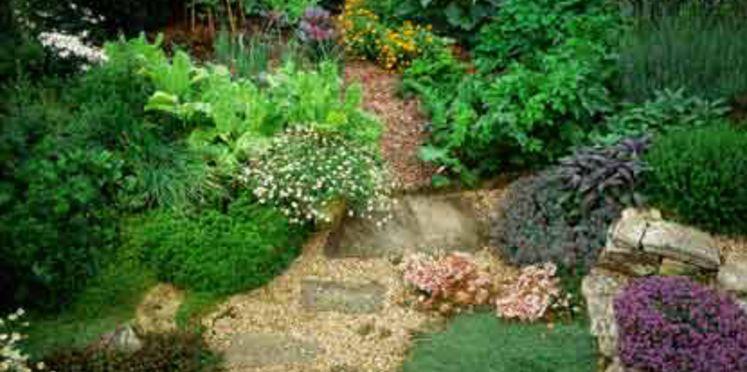 jardiner-ecolo