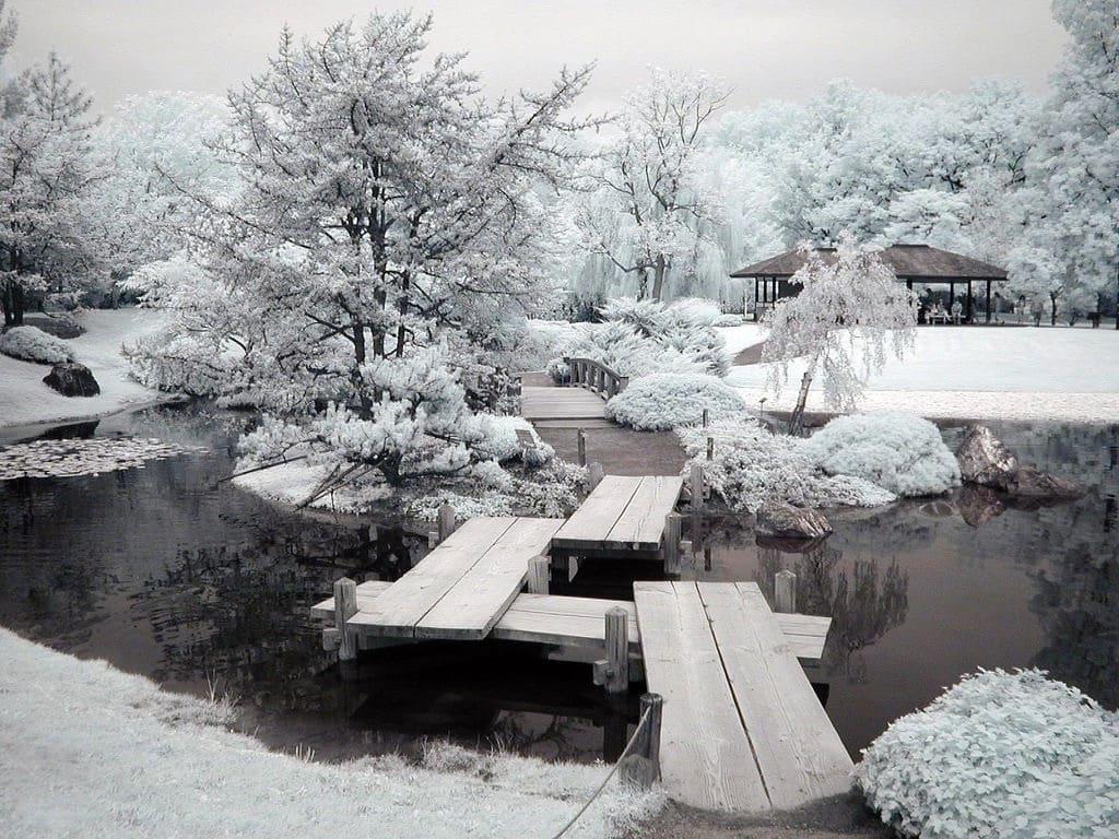 Jardin aménagé dans le style asiatique en hiver