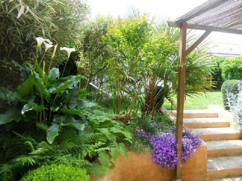 Conseils pour l'aménagement de jardin