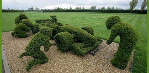 Conseils ce que vous devez savoir jardiner facile for Savoir jardiner