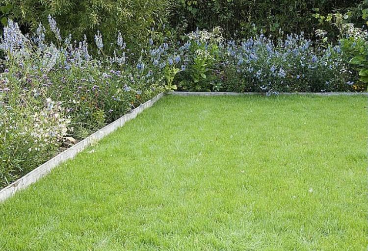 cinq tape pour semer du gazon jardiner facile. Black Bedroom Furniture Sets. Home Design Ideas