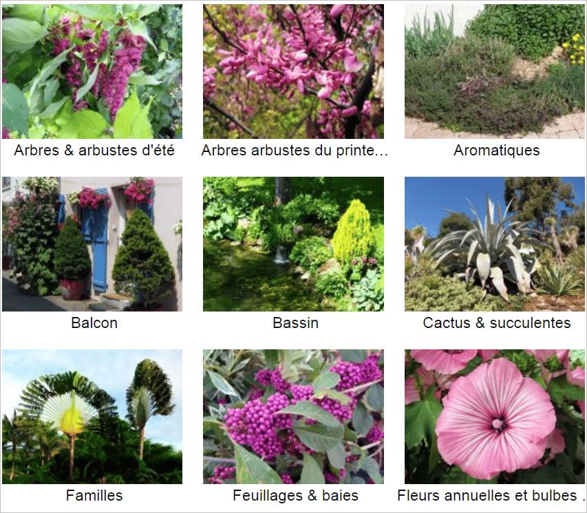 Les outils indispensables pour votre jardin jardiner for Choisir plantes jardin